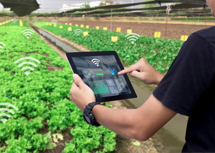 اینترنت اشیا در کشاورزی / iot in agriculture