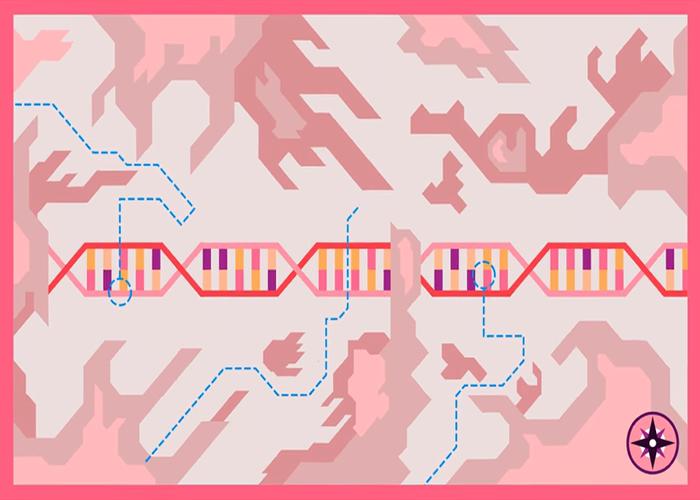 ویرایش ژن/ gene editing