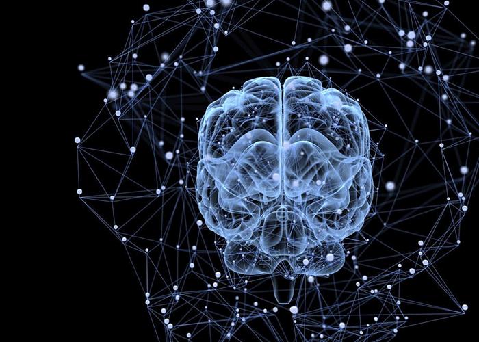 شبکه عصبی کانولوشن / convolutional neural network